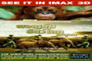 born-to-be-wild-imax-3d
